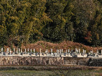 公園墓地の八柱霊園の特徴